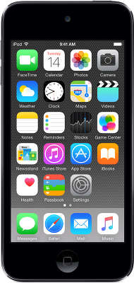 Медиаплеер Apple iPod touch [MKHL2RU/A] 64 GB space gray